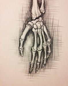 anatomy study skeleton hand by RichardBlumenstein Anatomy Sketches, Anatomy Drawing, Drawing Sketches, Sketching, Anatomy Study, Anatomy Art, Anatomy Reference, Skeleton Hands Drawing, Drawing Hands