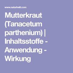 Mutterkraut (Tanacetum parthenium) | Inhaltsstoffe - Anwendung - Wirkung