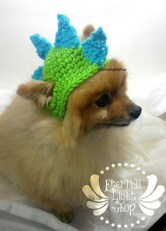 Ugh..so..so cute!! Etsy listing at https://www.etsy.com/listing/178763291/pet-dinosaur-beanie-xs-xl