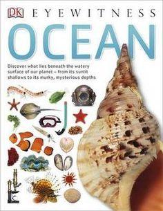 DK Eyewitness: Ocean - Paperback - 9781409343752