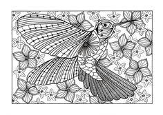 Here is an awesome FREE coloring page of a hummingbird to get you in the right mood for spring! #FaveCrafter #coloring #adultcoloring
