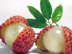The Lychee is the sole member of the genus Litchi in the soapberry family, Sapindaceae. It is a tropical and subtropical fruit tree native to southern China, Taiwan and Southeast Asia, and now cultivated in many parts of the world.