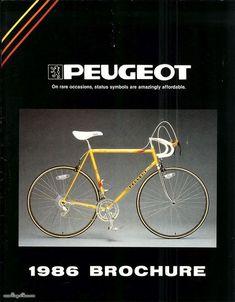SE Racing FLOVAL Flyer Cadre /& Fourche Décalque Kit gold Vélo BMX vie