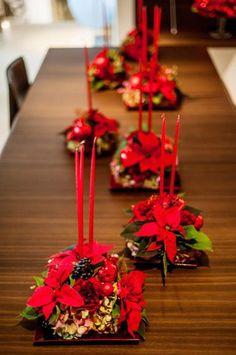 La Poinsettia, comúnmente la flor de Pascua o de Navidad, se ha convertido en una de las protagonistas de la decoración navideña. Pero ¿En qué nos puede beneficiar según el Feng Shui? Más en el blog http://infengshui.es/feng-shui-y-la-navidad-flor-de-pascua/