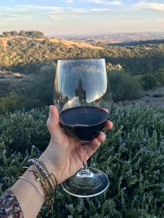 Calcareous Vineyard Paso Robles California Wine Country affordable weekend trip