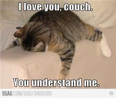 I love you too, couch.
