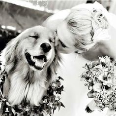 Dogs in weddings are adorable. They are family too!