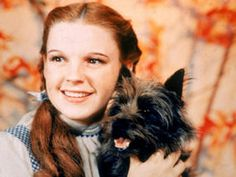 IT'S THE prize-winning role in the BBC's new hit show. But for innocent teenager Judy Garland, landing the part of Dorothy began a brutal exploitation from which she never recovered.