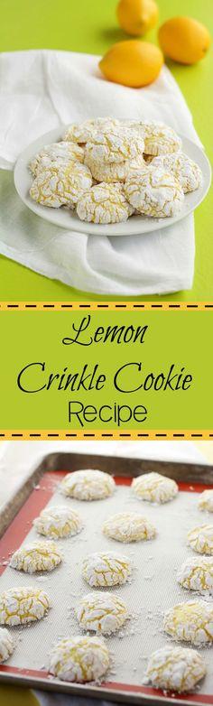 Lemon Crinkle Cookie Recipe | The Bearfoot Baker