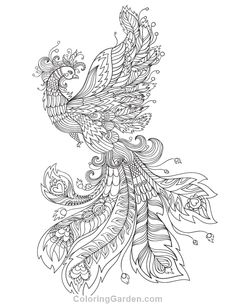Free Adult Coloring Pages Peacock Coloring Pages, Animal Coloring Pages, Free Coloring Pages, Coloring Books, Coloring Sheets, Coloring Pages For Grown Ups, Printable Adult Coloring Pages, Graphic 45, Doki