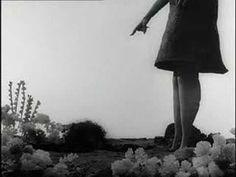 'Vincent', genial cortometraje de #TimBurton
