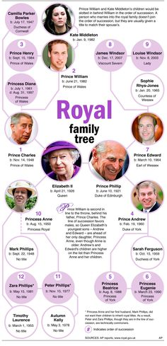 royal-family-tree-downjpg-3dfbcf66f7b82d57.jpg 987×2,048 pixels
