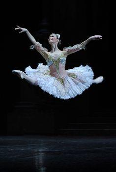 I Feel Absolutely Fabulous Ballet ArtBallet DancersBallerina QuotesJust