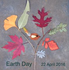 #Earth Day Collage  #Nature Craft #Trees for the Earth