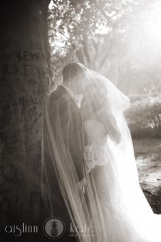 bride and groom under veil  black and white wedding