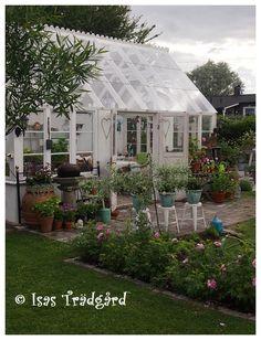 Isas Trädgård: Flytt av träd och jordslagna rosor Backyard Greenhouse, Small Greenhouse, Avocado Tree, She Sheds, Potting Sheds, Fairy Houses, Winter Garden, Diy Design, Design Ideas