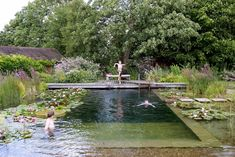 Water World A Natural Swimming Pool, Lily Pads Included is part of garden Pool Natural - Near NewarkonTrent, Nottinghamshire in the United Kingdom is a natural swimming pool that looks like an idyllic pond and has an aquatic garden to keep th Swimming Pool Pond, Natural Swimming Ponds, Natural Pond, Swimming Pool Designs, Swimming Nature, Ideas De Piscina, Garden Design Ideas On A Budget, Pool Landscaping, Water Garden