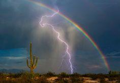 Rainbow Bolt - #Skies