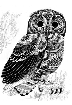 Zentangle art Owl by iain macarthur . so awesome. Ink Illustrations, Illustration Art, Graffiti Kunst, Doodles Zentangles, Amazing Art, Awesome, Amazing Drawings, Art Drawings, Animal Drawings