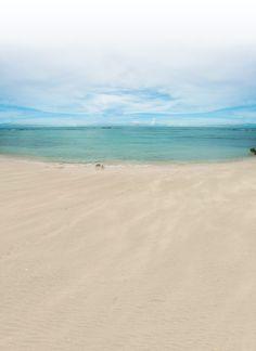 Scrub Island, BVI