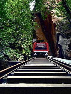 Scenic Railway in the Blue Mountains near Sydney, Australia. Hold on. What a ride, Imagine hanging over a cliff face looking straight down. Oh The Places You'll Go, Places To Travel, Travel Destinations, Places To Visit, Tasmania, Bonde, Great Barrier Reef, Blue Mountain, Australia Travel