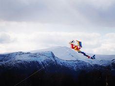 Home made kite