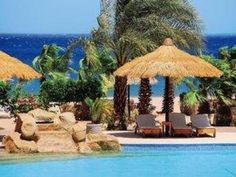 Lotus Bay Beach Resort | Ägypten - Hurghada & Safaga - Port Safaga | 86 Lotus, Patio, Beach, Outdoor Decor, Home Decor, Vacation, Travel, Homemade Home Decor, Lotus Flower