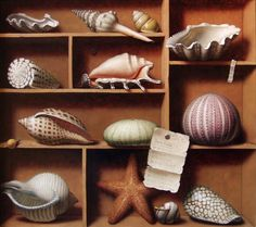 Russell W. Gordon — Shell  Collection   (788x700)