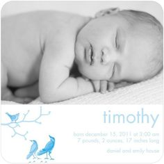 Blue birds decorate this wintery baby announcement for boys.