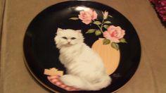 Felicia by Aldo Fazio plate for Reco Felicia, Catio, Decorative Plates, Ebay, Animals, Cat Design, Art, Dishes