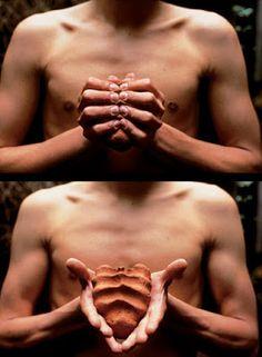 - OROZCO Gabriel (né en 1962), My Hands Are My Heart, 1991, deux épreuves argentiques à blanchiment de colorants, 23,2x31,8 cm chacune, édition de 5. L'artiste comprime et moule un bloc d'argile rouge, devant sa poitrine nue, exposant ensuite le résultat qui forme un cœur marqué des empreintes des doigts.