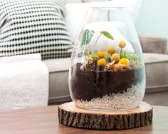 love the idea of the vase on the slab of wood. cute!