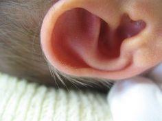 Cuidados: El oído del bebito. http://hablandodebebes.com/cuidados-del-oido-del-bebito/