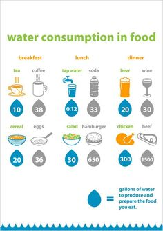 Water Consumption - How much water do you really consume each day? This infographic will show you how much water it takes to produce the things we eat and drink.