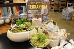 Add the beauty of a terrarium to your home with a maintenance-free terrarium from the @worldmarket event today from 2-4PM in Simi Valley!