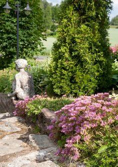 Patsaat sopivat puutarhan koristeiksi mainiosti. Sopivasti kasvillisuuden ja pihan rakenteiden joukkoon aseteltuina ne tuovat puutarhaan iloa ja kauneutta. Katso ideoita Viherpihasta.