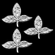 Img-231109Silvar-Leaf-Set-3-1s.jpg (190×190)