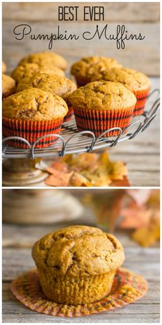 The BEST pumpkin muffins I've ever tasted! Made with coconut oil.