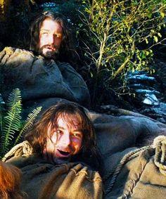 "Thorin and Kili. Kili looks like he's having the time of his life, and Thorin is rolling his eyes like, ""Seriously, Kili?"" :)"