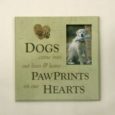 This endearing photo frame for your pet reminds you how your pet has left an everlasting imprint on your heart.  Face of frame says:  Dogs come into our lives and leave Paw Prints on our Hearts.  Display in a special spot in your home as a tribute to your faithful friend. $27.99