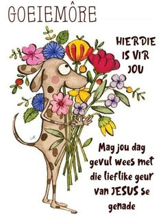 Good Morning World, Good Morning Wishes, Good Morning Quotes, Lekker Dag, Goeie More, Afrikaans Quotes, Cute Messages, Special Quotes, Birthday Wishes