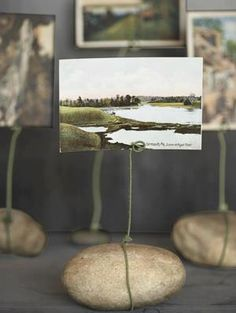 rock picture display  Price tags and info cards