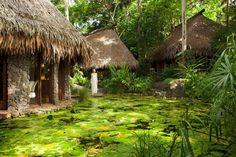 Laucala Island (8)