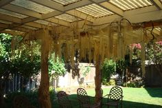 bayou party theme idea-vines and moss/cheesecloth hung from patio roof