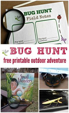 Bug Hunt: Outdoor Activities for Kids with free printable clues