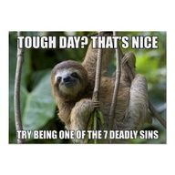 Zazzle LOL Posters - A young brown-throated three-toed sloth poster. Use the code LOLPRFCTPOST for 53% off!