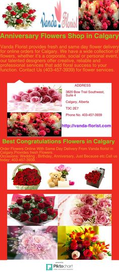 Order flowers online with same day flower delivery in calgary from vanda florist.provides fresh flowers for occasions like : wedding , birthday, christmas day, anniversary etc. plz Call us today: 403-457-3939. address: 3820 bow trail southwest, suite 4, calgary, alberta Christmas Flower Delivery, Same Day Flower Delivery, Anniversary Flowers, Order Flowers Online, Fresh Flowers, Calgary, Trail, Bow, Birthday