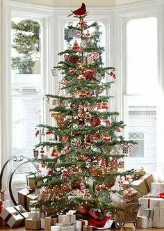 what a beautiful christmas tree it looks like a huge feather tree with its open branches all better for seeing the ornaments