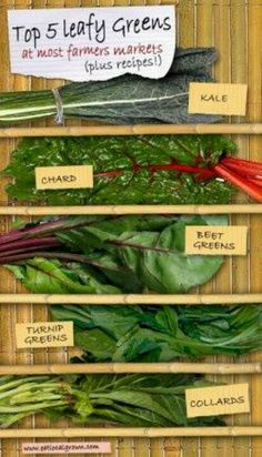 Dark Leafy Greens are one of the most nutritious, inexpensive and easy to cook real foods! You can almost always find leafy greens like Kale, Spinach, Swiss Chard, Collards and more at most Farmers Markets. Here's how to cook leafy greens along with some Nutrition Education, Holistic Nutrition, Swiss Chard Recipes, Whole Food Recipes, Healthy Recipes, Vegetarian Recipes, Dinner Recipes, Farmers Market Recipes, Greens Recipe