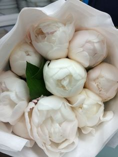 White peonies- LIHMIL INC next day shipping-pickup! No mínimums- Build.box White Peonies – LIHMIL INC Next Day Pickup! Purple Peonies, Peonies Bouquet, White Peonies, Bouquets, Blush Peonies, Black Peony, White Flowers, Beautiful Flowers, Exotic Flowers